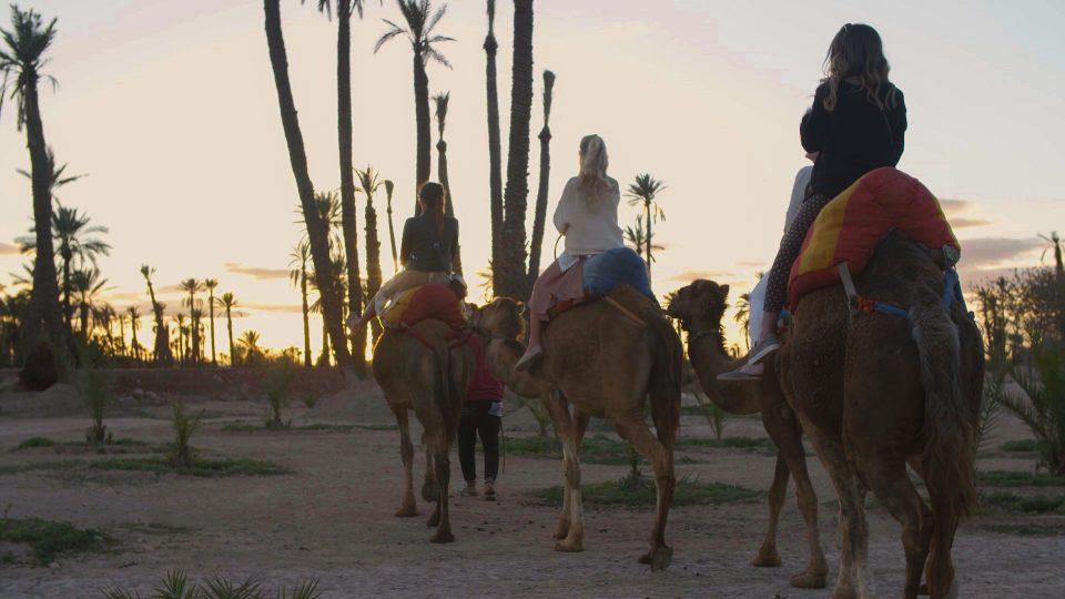 Steve Madden x Marrakech.Still004